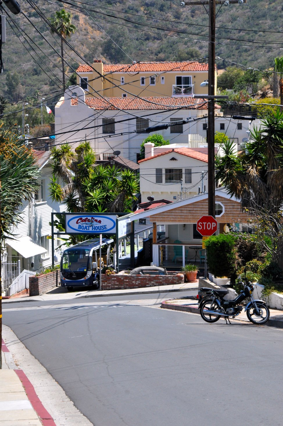 Hilly_Streets_Of_Catalina