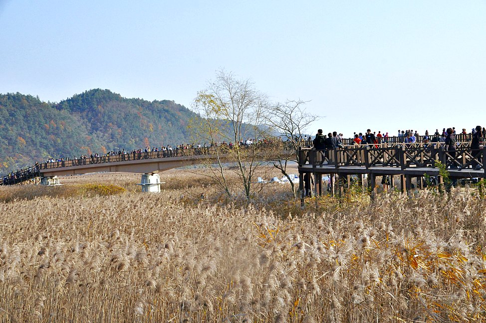 post_2016_review_suncheon_bay
