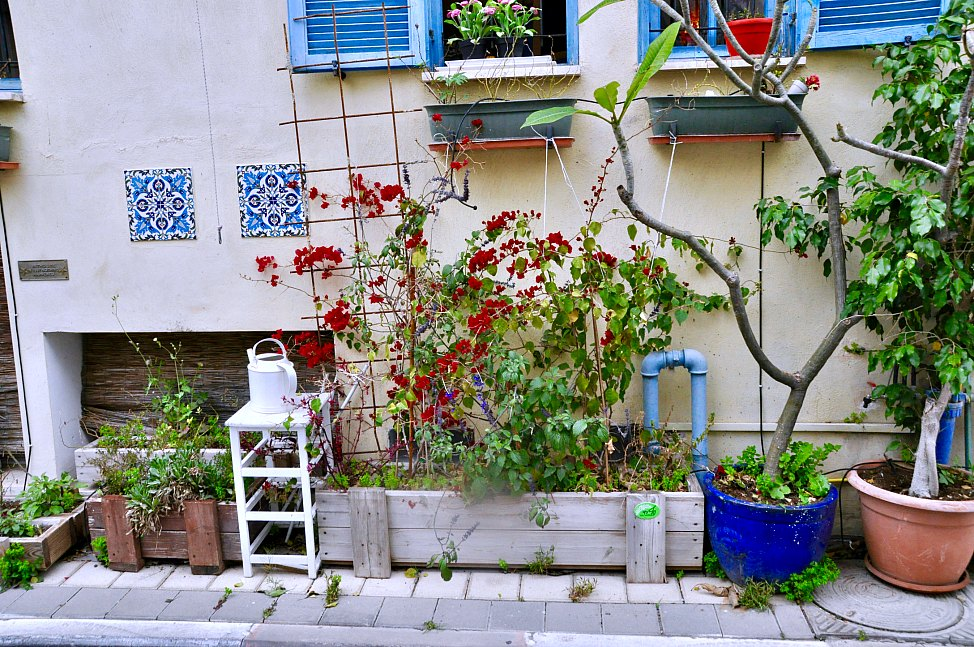 Neve_Tzedek_Front_Garden