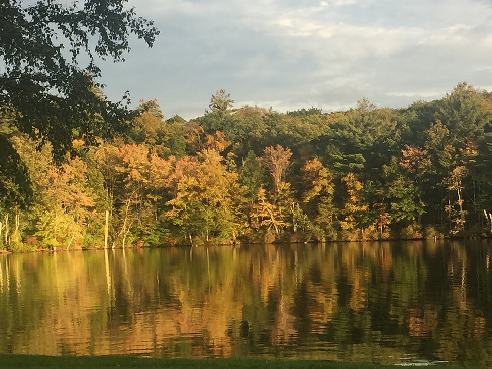 Golden Hour on the Lake